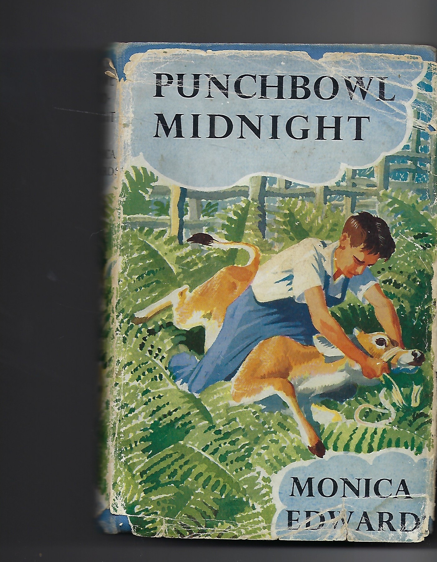 Image for Punchbowl Midnight