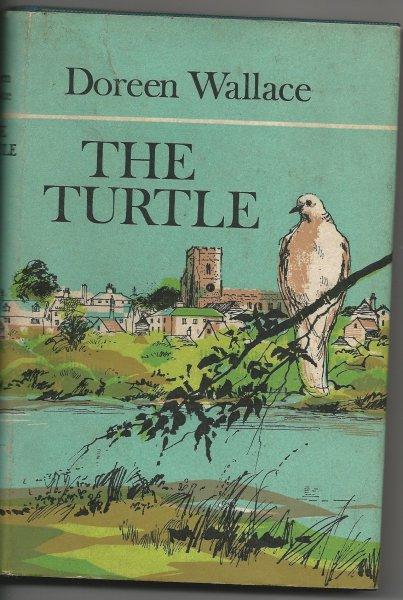 Itss An Aardvark Eat Turtle World
