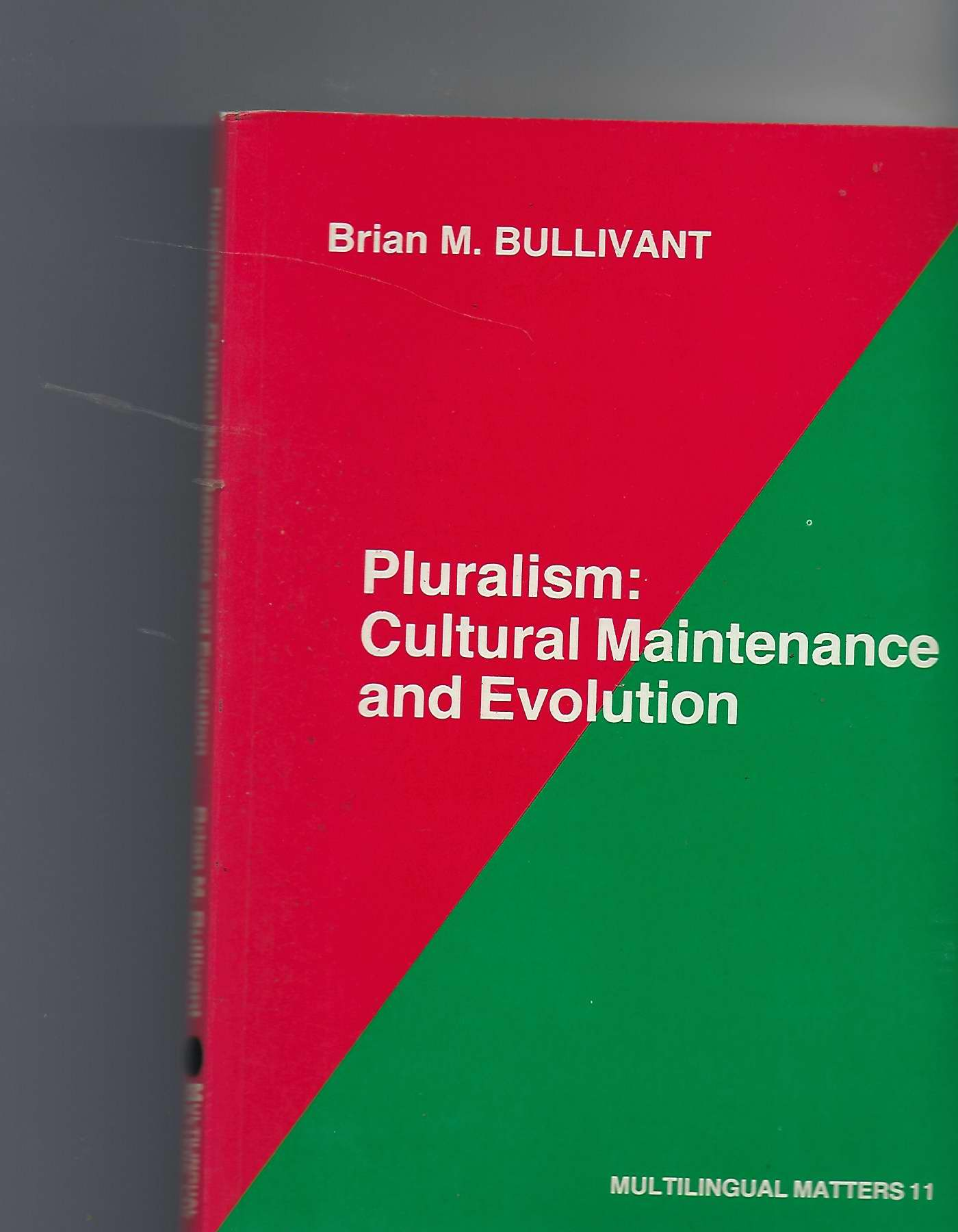 Image for Pluralism: Cultural Maintenance and Evolution