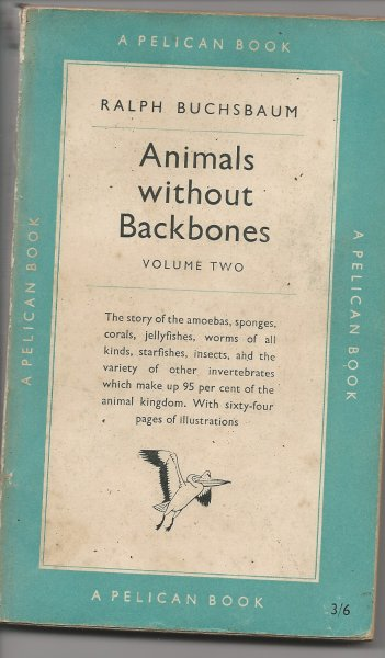 Image for Animals Without Backbones Vol. 2 An Introduction to the Invertebrates