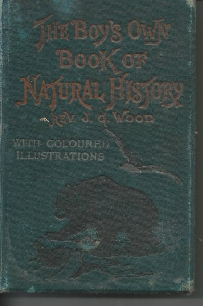 Image for The Boy's Own Book of Natural History With Coloured Illustrations