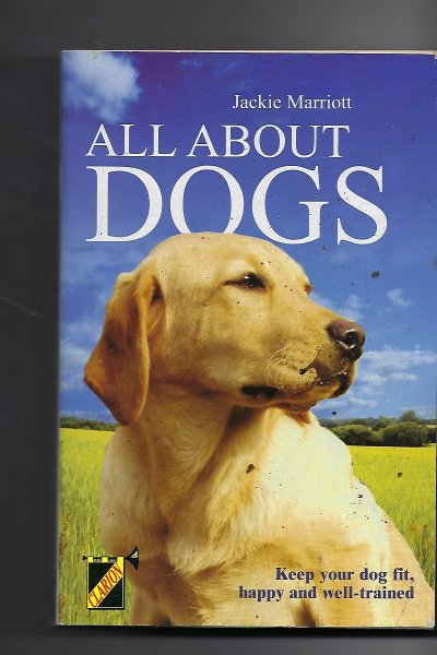 Image for All about Dogs
