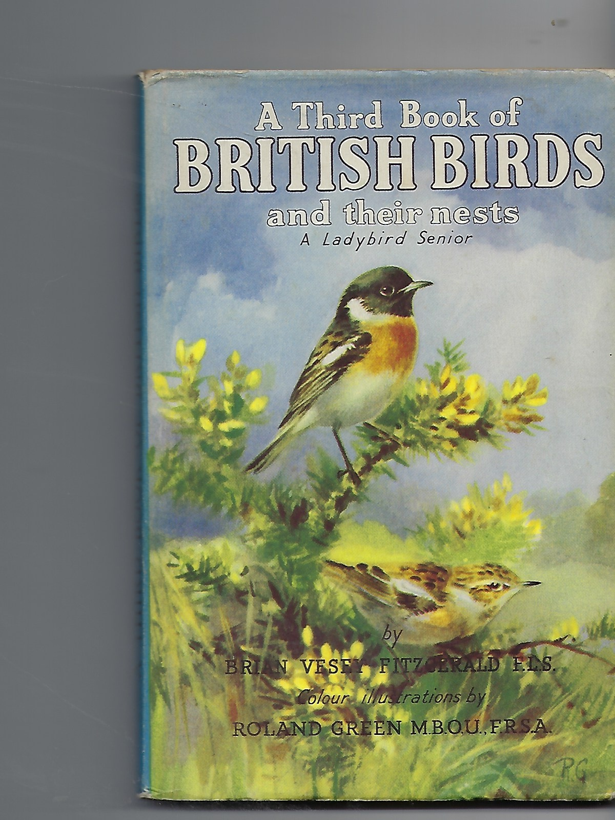 Image for A Third Book of British Birds & Their Nests