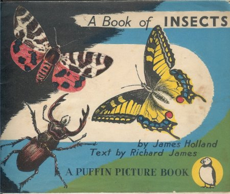 Image for A Book of Insects - Puffin Picture Book Number 5
