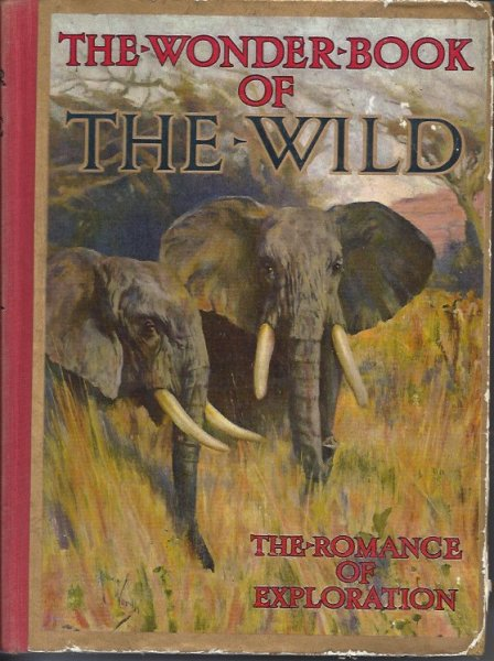 Image for The Wonder Book of the Wild The Romance of Exploration and Big Game Stalking