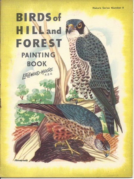 Image for Birds of Hill and Forest Painting Book Nature Series Number 8
