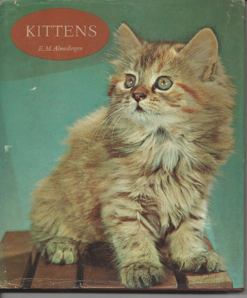 Image for The Batsford Colour Book of Kittens (Kittens in Colour)