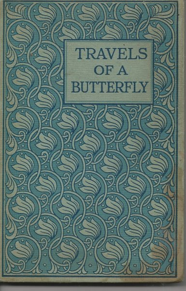Image for The Travels of a Butterfly - Illustrated