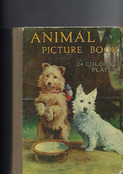 Image for The Animal Picture Book 24 Colour Plates, Many Other Illustrations
