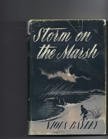 Image for Storm on the Marsh