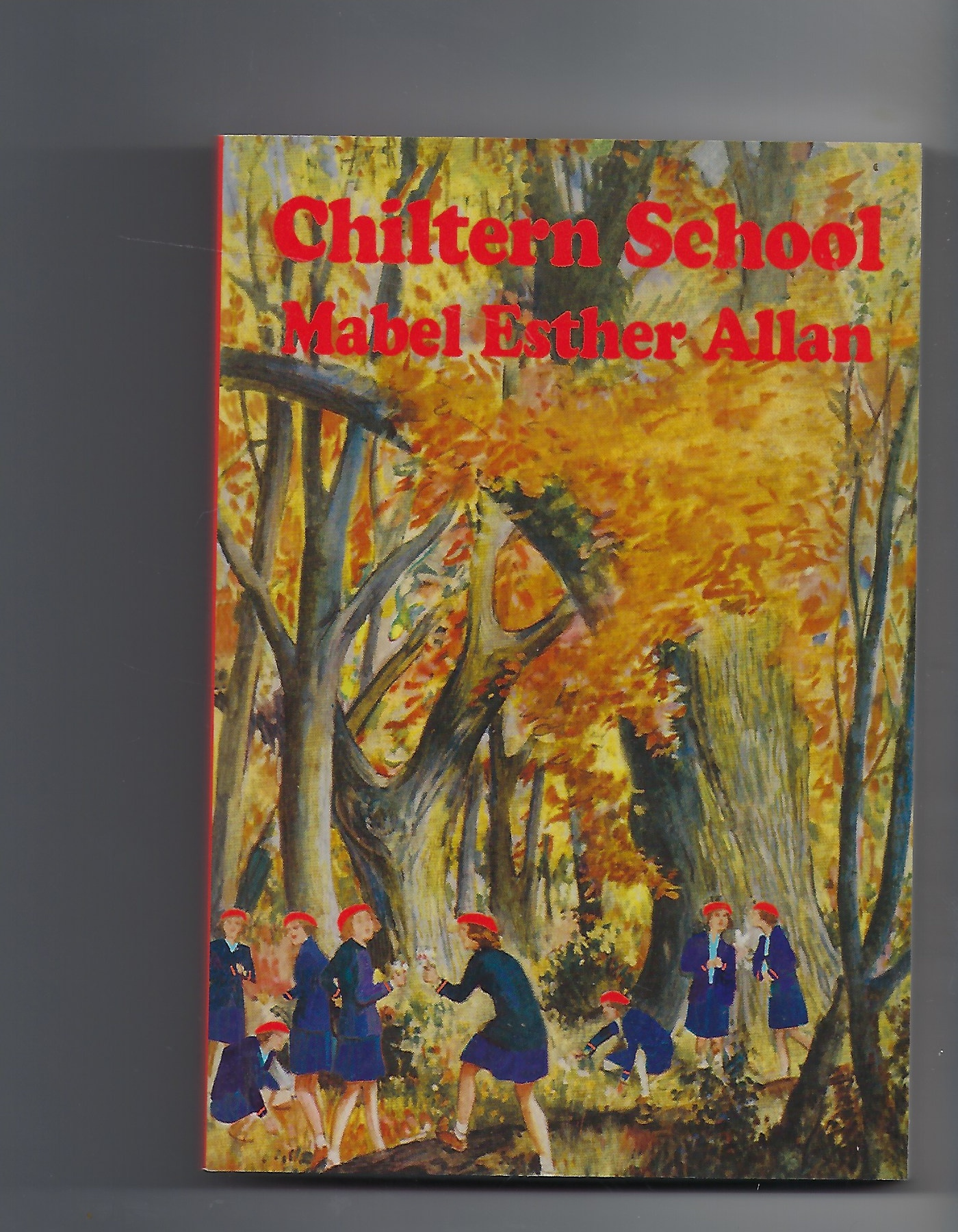 Image for Chiltern School + the School That Wasn't Welsh, a Chiltern Story
